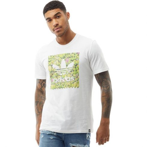 adidas Originals férfi Skateboarding BB Cactus póló